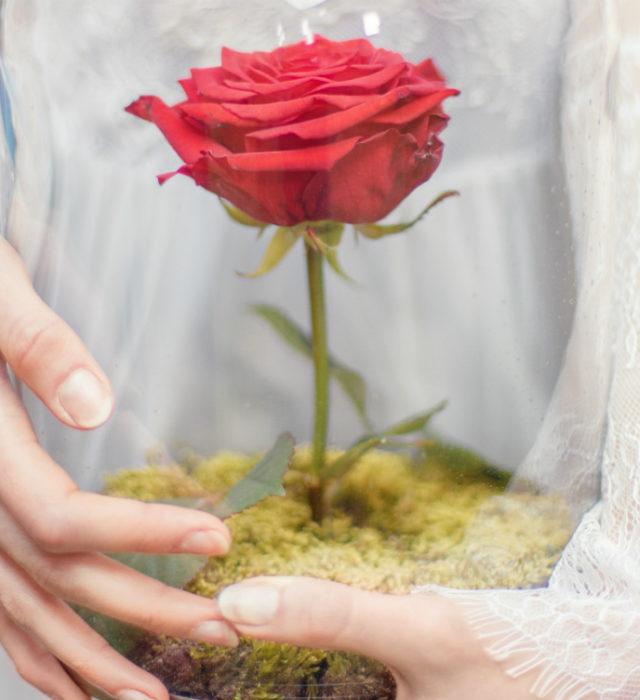 Свадьба в Италии стоимость