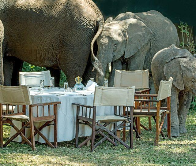 Свадебный ужин в Италии: расставляем приоритеты